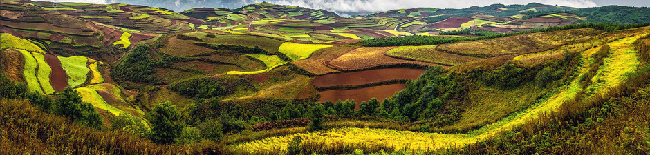 Show_kunming-city-_-dongchuan_-beautiful-garden-at-hongtudi